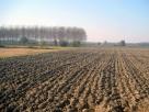 Terreno arato