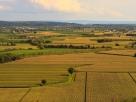 Tipična kmetijska krajina v Soški nižini